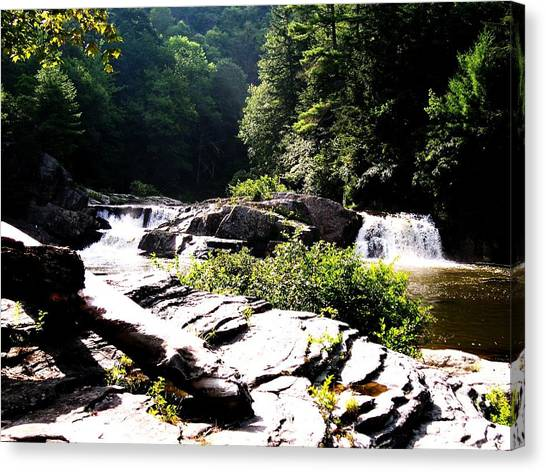 Double Waterfalls Canvas Print by Carrie Munoz