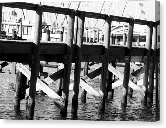Down By The Marina Canvas Print by Nicholas Evans
