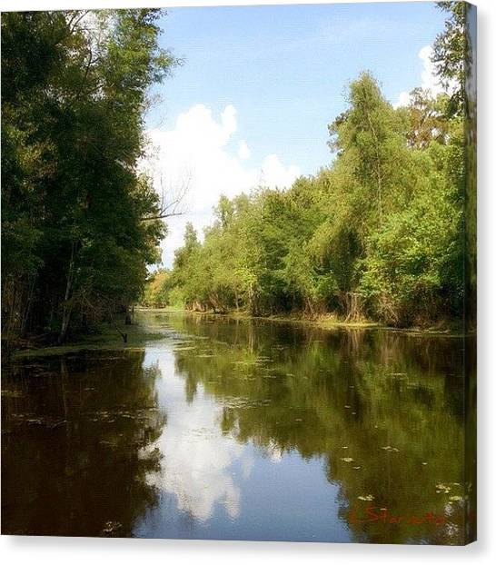 Swamps Canvas Print - Down On The Bayou. #bayou #trees #water by Lester Starnuto