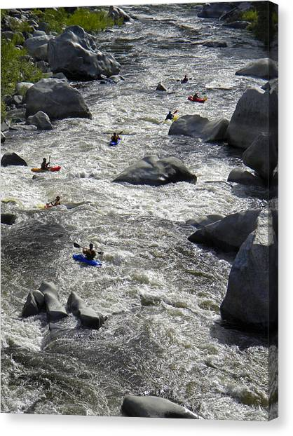 Wilson River Canvas Print - Down The Feather River by Frank Wilson