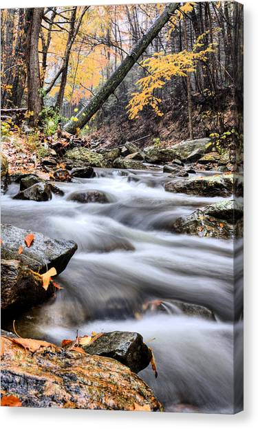 Downhill Canvas Print by JC Findley