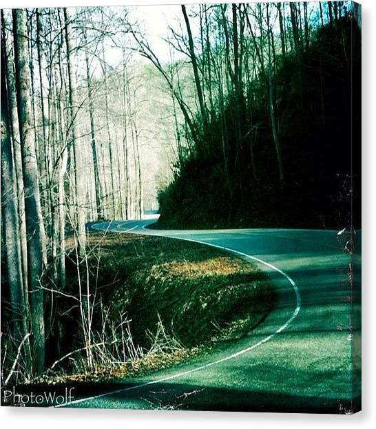 Wolves Canvas Print - Dragon Tails In Tn, 11 Miles 318 Curves by Wolf Stumpf