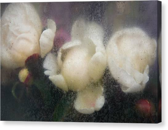 Dreaming Of Rembrandt Canvas Print