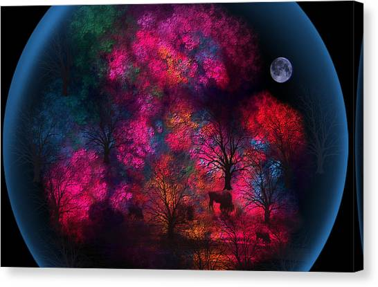 Dreamy Little Forest Canvas Print