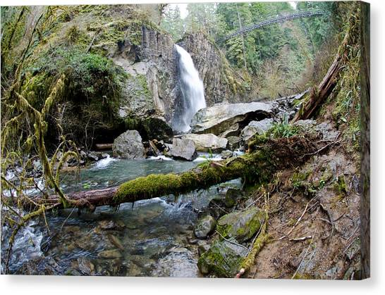 Drift Creek Falls Canvas Print