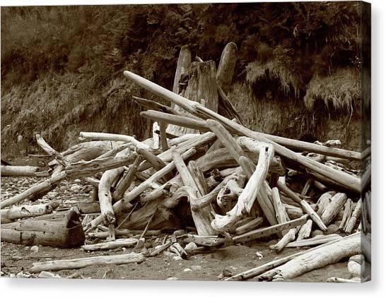 Driftwood Pile San Juan Canvas Print