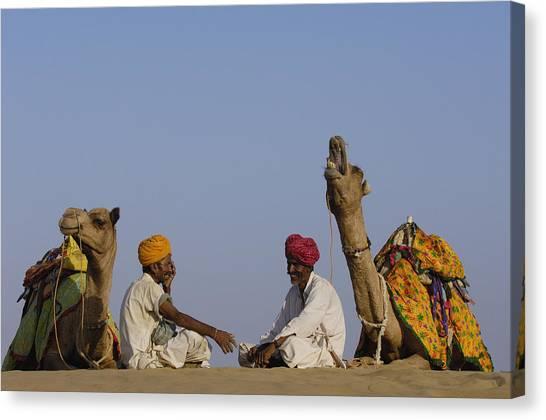 Thar Desert Canvas Print - Dromedary Camelus Dromedaries Pair by Pete Oxford
