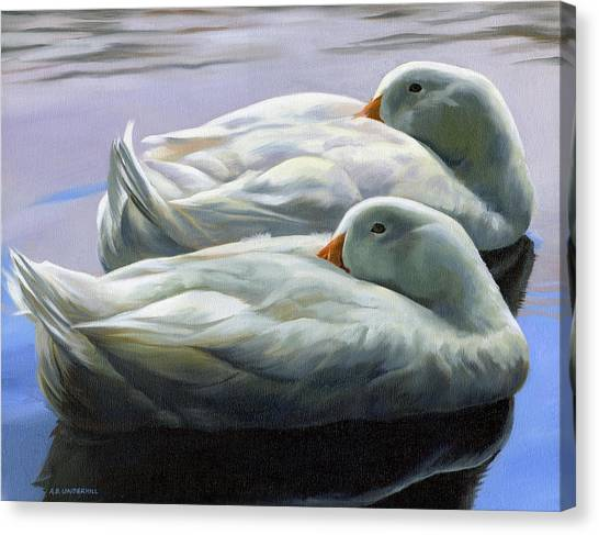 Duck Nap Canvas Print