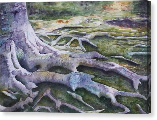 Dunbar Cave Roots  Canvas Print
