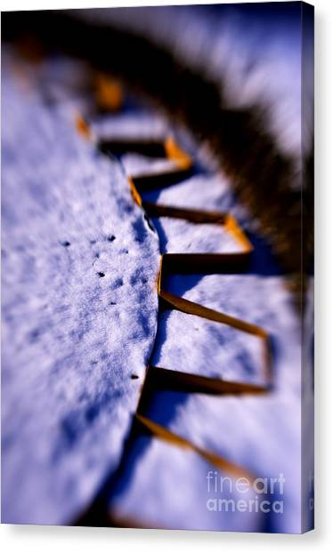 Dusty Snow And Geometry Third View Canvas Print by Anca Jugarean
