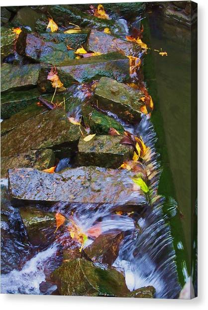 Early Autumn 2 Canvas Print by Todd Sherlock