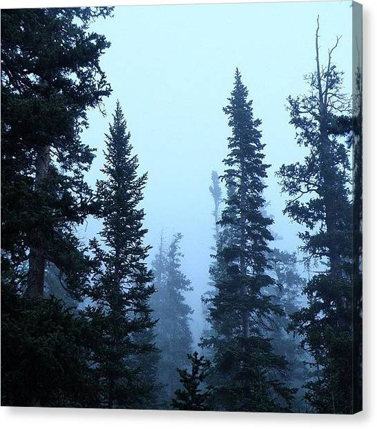 Rocky Mountains Canvas Print - #early #morning #mist In #rocky by James Sibert