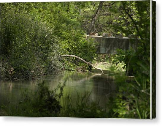 Early Spring Creek Canvas Print by Cindy Rubin