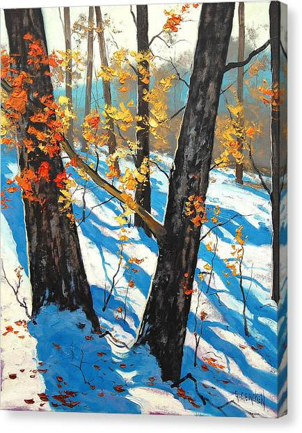 Frosty Canvas Print - Early Winter by Graham Gercken
