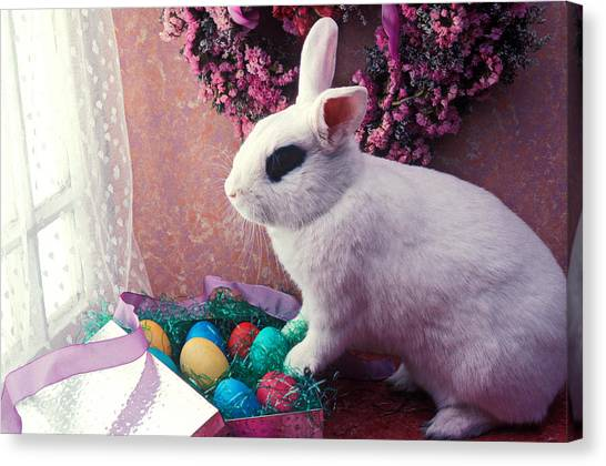 Easter Bunny Canvas Print - Easter Bunny by Garry Gay