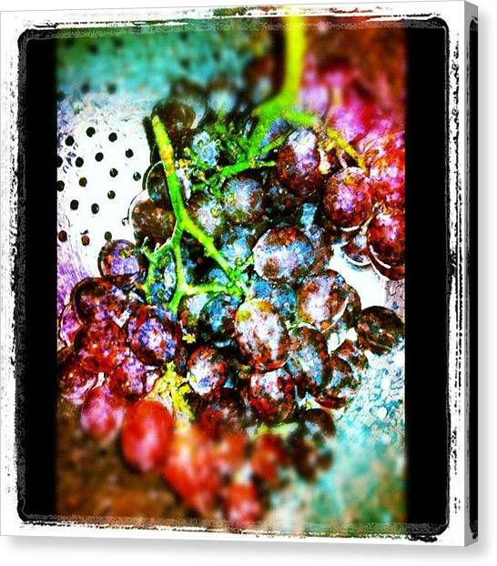 Grapes Canvas Print - Eating A Late #night #snack #grapes by Alicia Greene