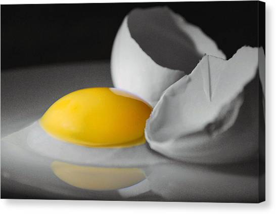 Egg And Black And White Canvas Print