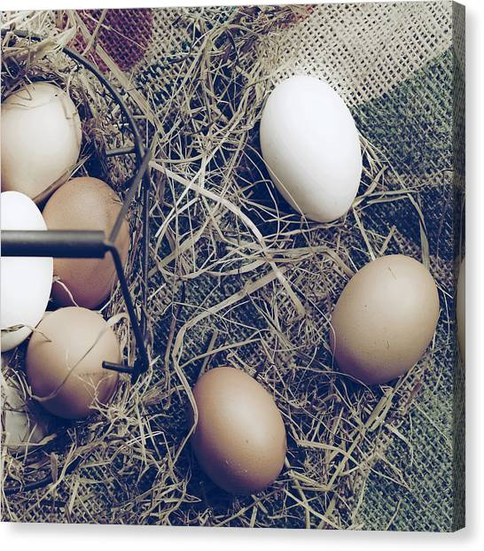 Easter Baskets Canvas Print - Eggs by Joana Kruse