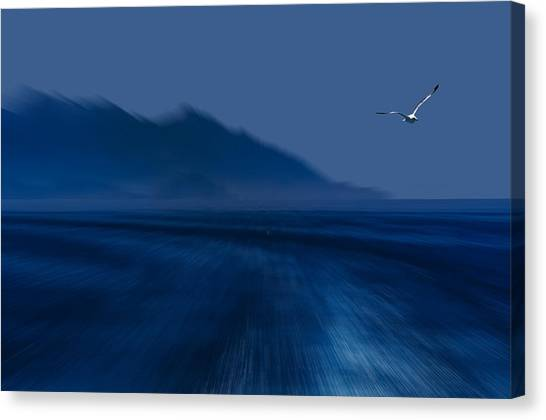 Elba Island - Flying Away - Ph Enrico Pelos Canvas Print