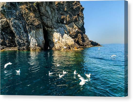 Elba Island - Seagulls Coast 3 - - Costa Dei Gabbiani 3 - Ph Enrico Pelos Canvas Print