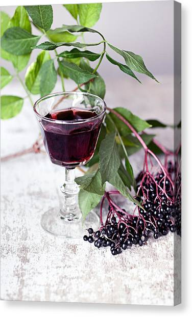Juice Canvas Print - Elderberries 04 by Nailia Schwarz