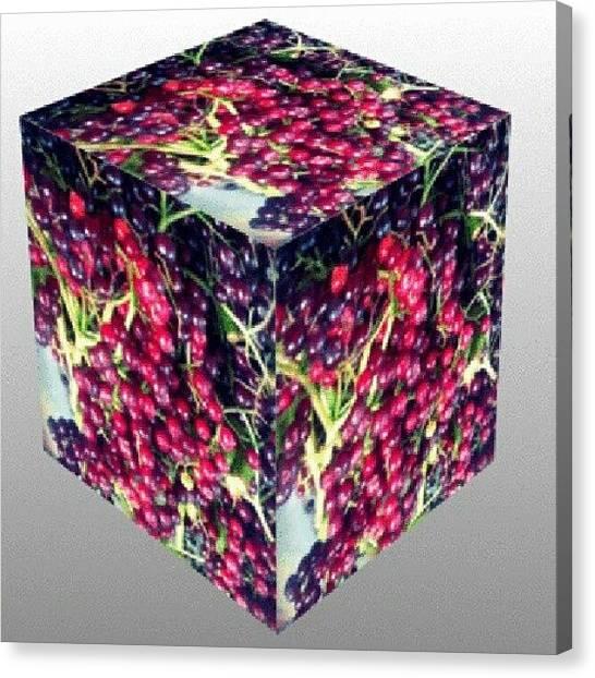 Berries Canvas Print - #elderberries #3d #webstagram by Andi Lockett-johnson