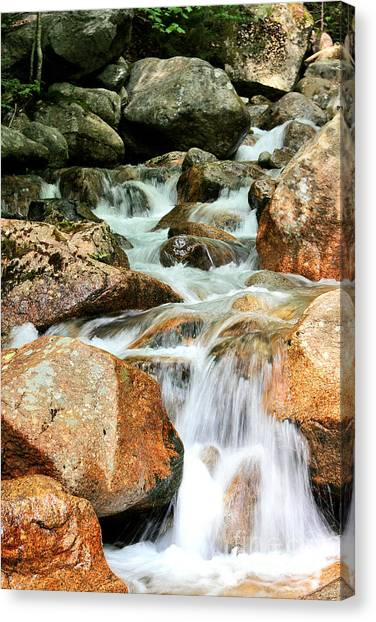 Element Water Canvas Print