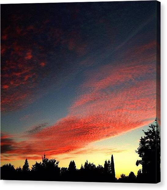 Grove Canvas Print - Elk Grove Sunset  #sunset #nightsky by Paul Wallingford