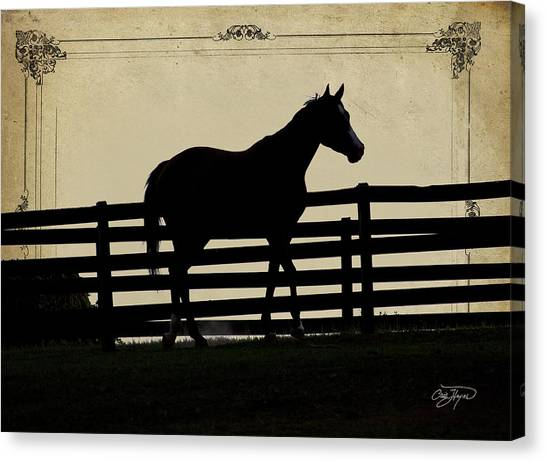 End Of The Day In Georgia - Horse Lovers Must See - Artist Cris Hayes Canvas Print