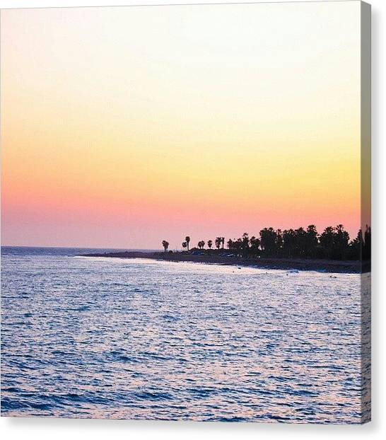 Palm Trees Canvas Print - Endless Ocean And Sky by San Gill