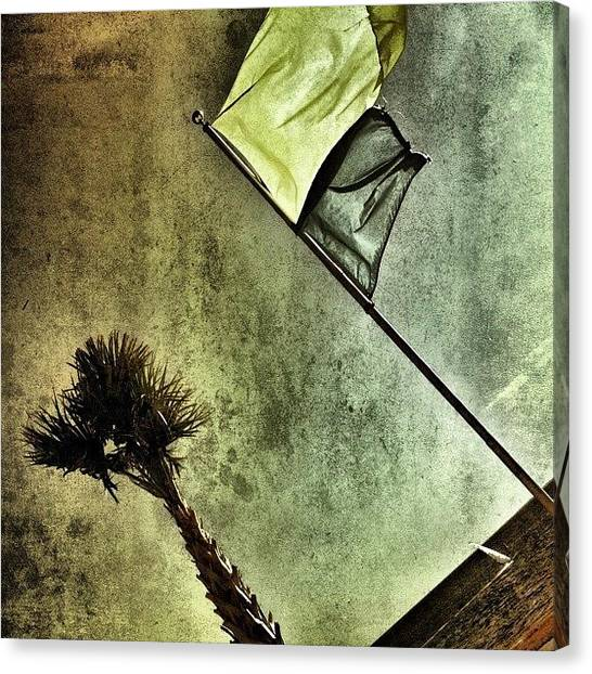 Flags Canvas Print - Endless Summer by Joel Lopez