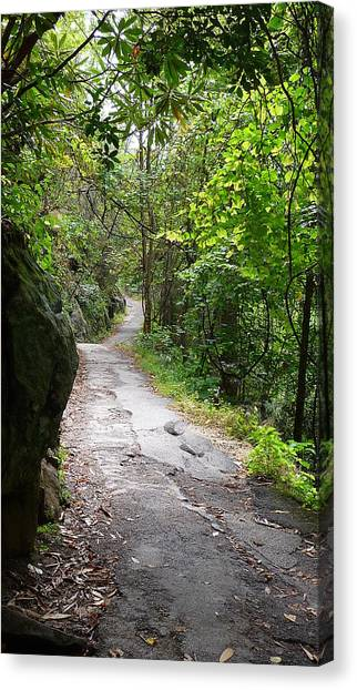 Enduring Path Canvas Print by Michael Carrothers