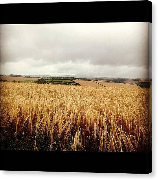 Harvest Canvas Print - #england #gb #harvest #farming #corn by Gerry Richards
