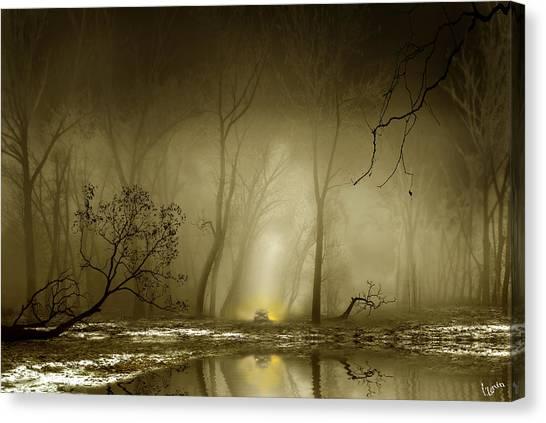 Enigmatic Passage Canvas Print by Igor Zenin