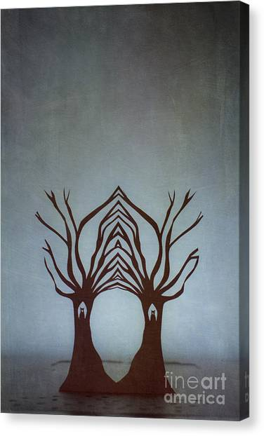 Entwined Canvas Print by Catherine MacBride
