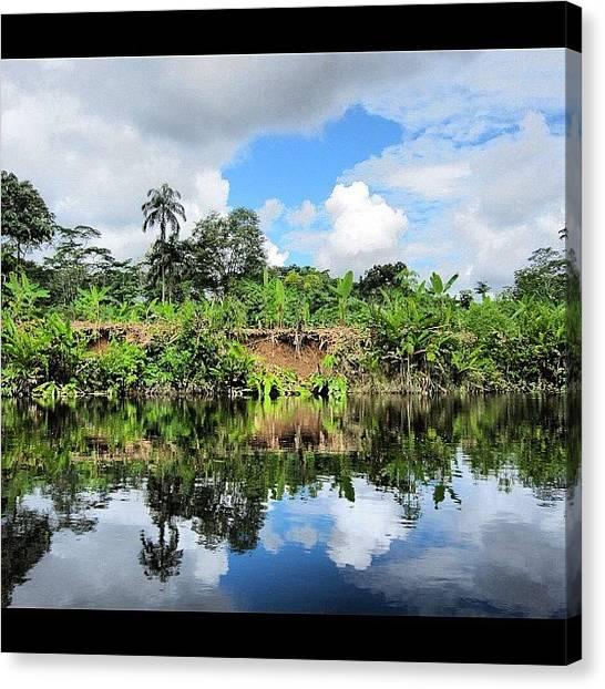 Jungles Canvas Print - #equador #jungle #amazon #amazing by Alon Ben Levy