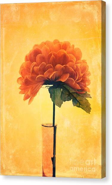 Estillo - 01i2t03 Canvas Print