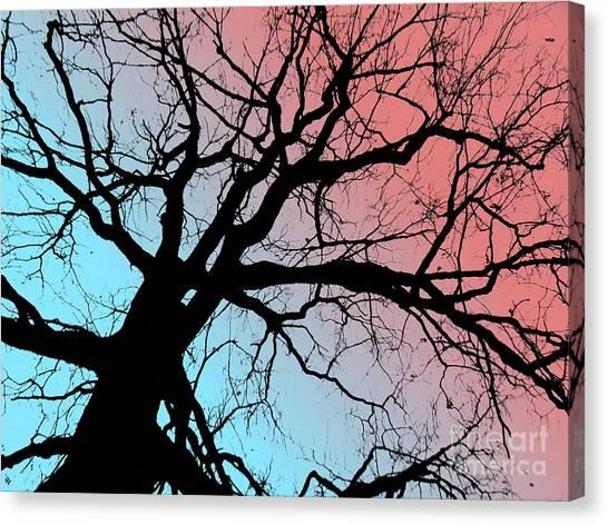 Evening Breaks Canvas Print