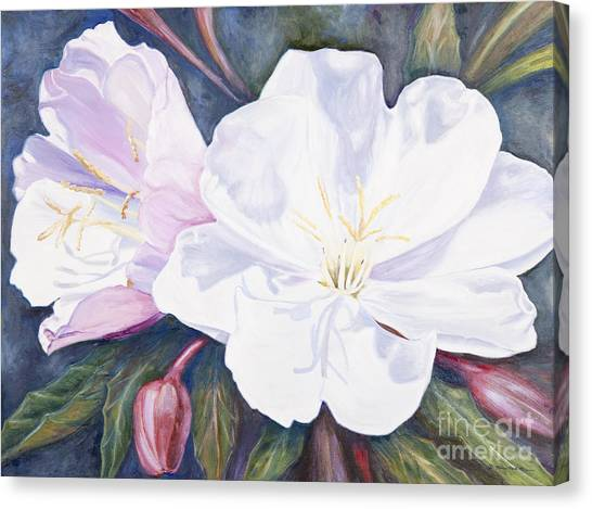 Evening Primrose Canvas Print