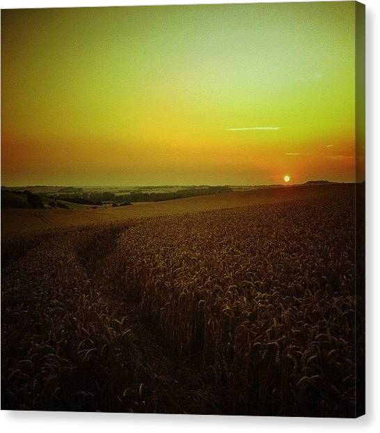 Harvest Canvas Print - #evening #sunset Over #wheatfield by Nikki Sheppard