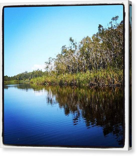 Everglades Canvas Print - #everglades #cooloola #uppernoosariver by Tony Keim