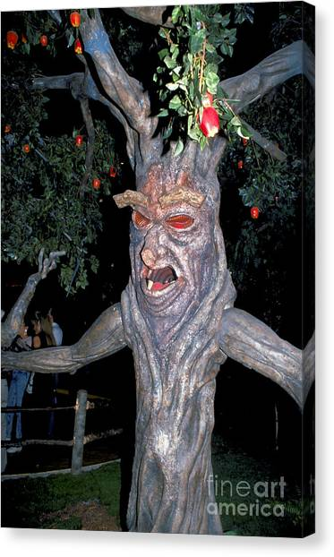 Evil Tree In Oz Canvas Print by Carl Purcell