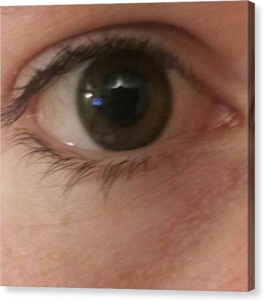 Irises Canvas Print - #eye #eyes #eyeball #closeup #macro by Paul Petey