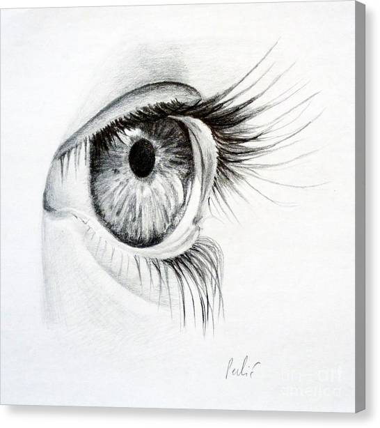 Eye Study Canvas Print