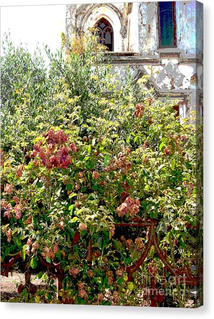 Faded Flowers Canvas Print by David Peters