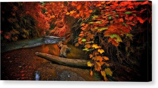 Fall Along The Creek Canvas Print
