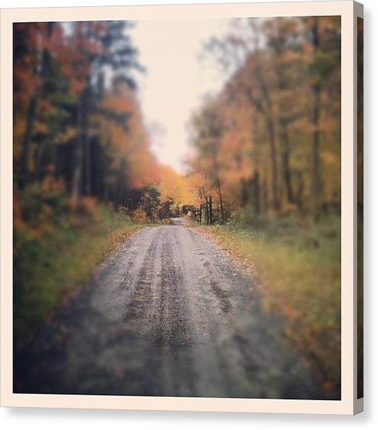 Dirt Road Canvas Print - #fall #foliage #fallfoliage #trees by Dylan Ferris