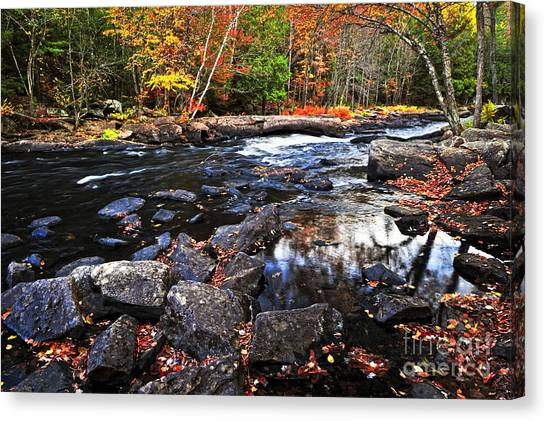Algonquin Park Canvas Print - Fall Forest And River Landscape by Elena Elisseeva