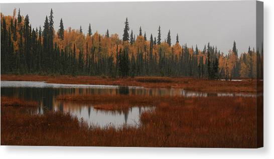 Fall In Alaska Canvas Print