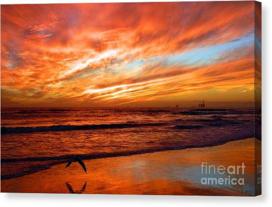 Fall In California Canvas Print